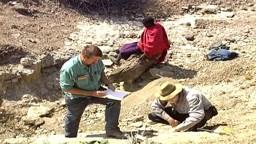 Methods of Paleoanthropology
