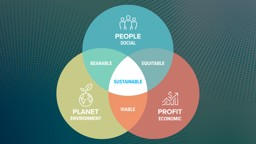 CSR and the Triple Bottom Line