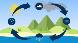 Diving into the Water Cycle