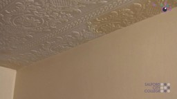 Applying Emulsion Paint to a Ceiling Area