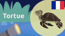 Sea Animals (Les Animaux Aquatiques)