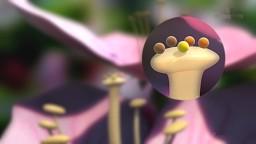 Fertilisation in Flowering Plants