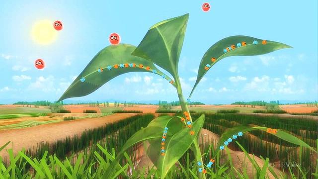 Autotrophic And Heterotrophic Nutrition In Plants