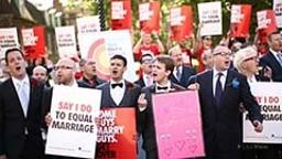 'Big Gay Rainbow' – NZ Parliament