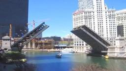 Building Bridges: The Physics of Construction