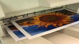 Commercial Printing Processes