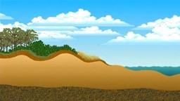Coastal Dunes: Ecology and Rehabilitation